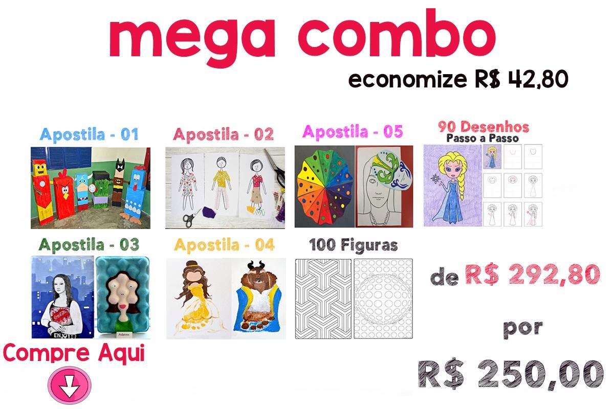MEGA COMBO - 250,00